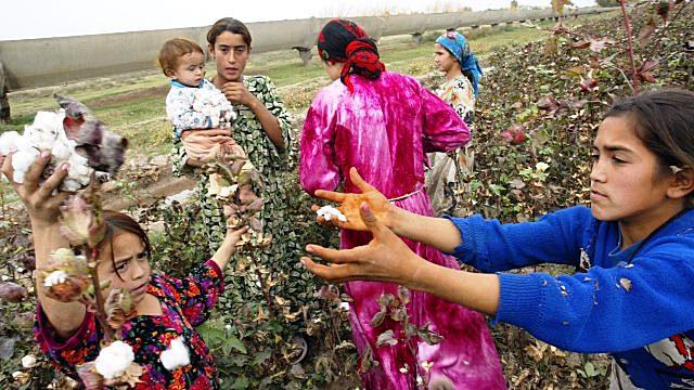 Отношение узбек к русским женщинам 197