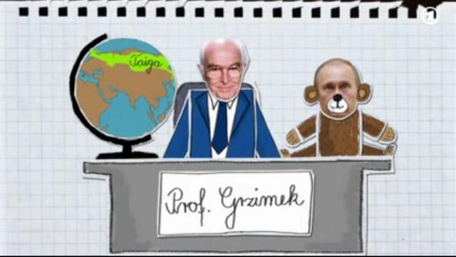 Устами ребенка немецкое ТВ рассказало о повадках российского «царя тайги»