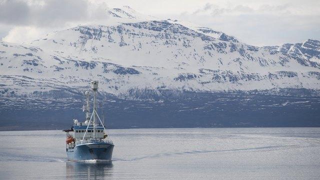 WE: Америка нанесет по России двойной удар, если потеснит ее в Арктике