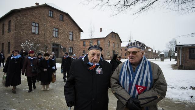 Немецкие левые: Помнить Освенцим значит помнить его освободителей