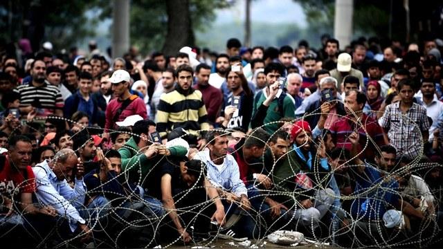 CSM: Беженцы с Ближнего Востока помогут эстонцам полюбить русских