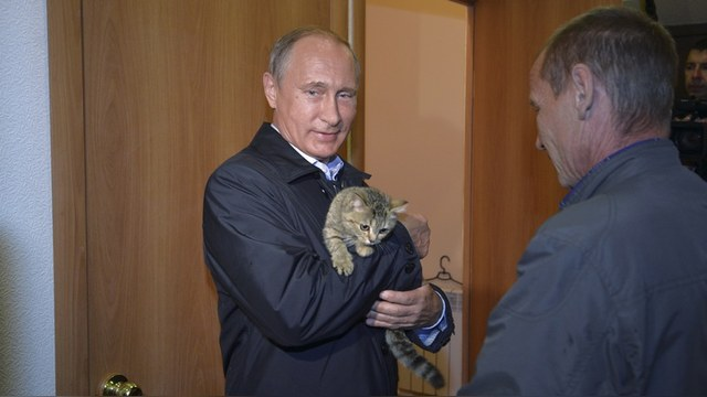 https://russian.rt.com/inotv/s/content/6/j/p/250716_1_cat_big.jpg