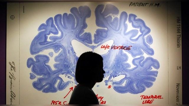 BBC: Российский миллионер ищет бессмертие в загрузке мозга на компьютер