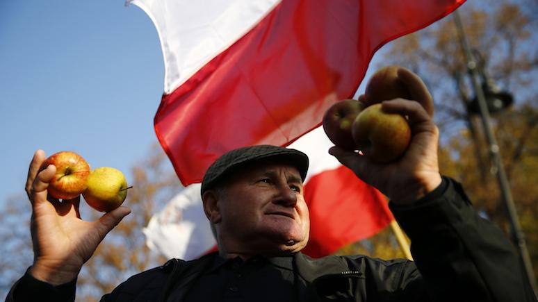 Rzeczpospolita: Россия заскучала по польским яблокам