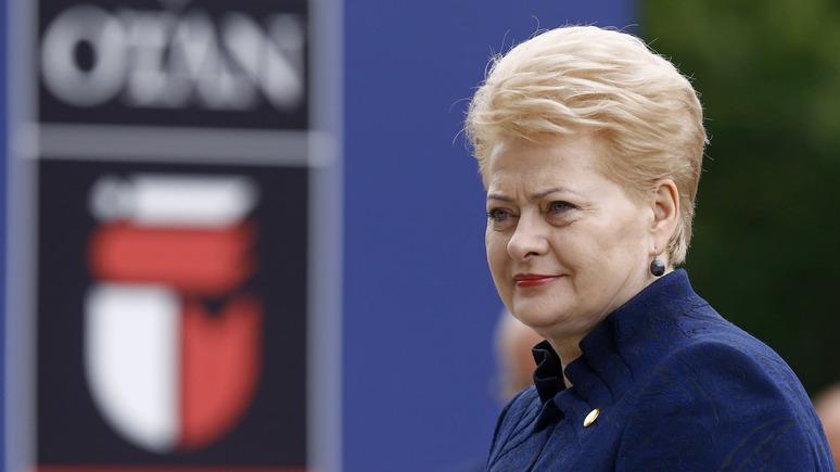 Литва призывает США «существенно укрепить восточный фланг НАТО»