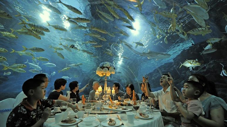 China Daily: китайский туризм уйдёт под воду с помощью российских учёных