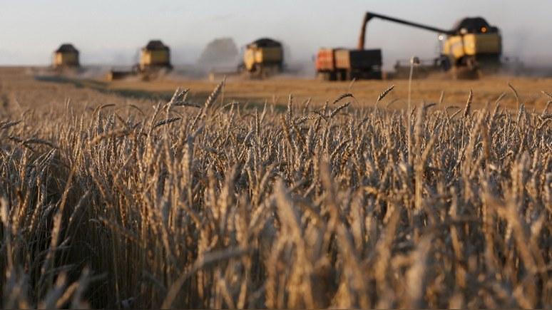 Bloomberg: дождливое лето позволит российским фермерам побить советский рекорд