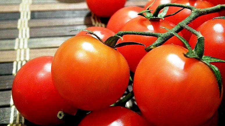 Турецкий бизнесмен: россияне считают дни до отмены эмбарго на ввоз наших помидоров