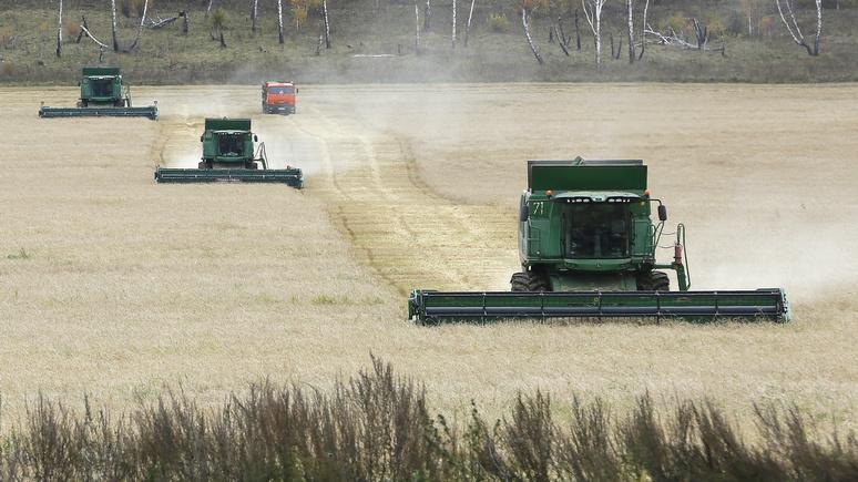 Bloomberg: Россия бьёт рекорды по экспорту пшеницы и не собирается останавливаться