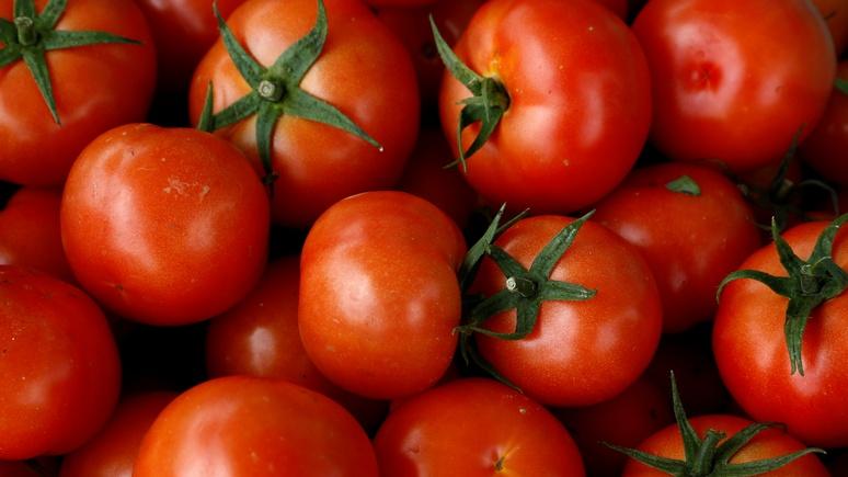 Российская Федерация сняла ограничения по организациям для турецких томатов