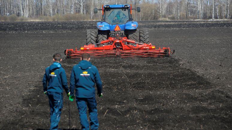 DW: санкции Запада положительно сказались на российском сельском хозяйстве