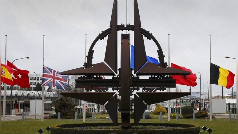 Times: Трампа призывают остаться в НАТО, чтобы «не делать подарок» Путину