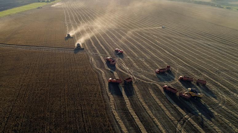 WSJ: «возродившаяся» Россия наступает на пятки американским фермерам