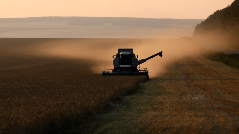 GT: благодаря российской пшенице Москва и Китай берут новые торговые высоты