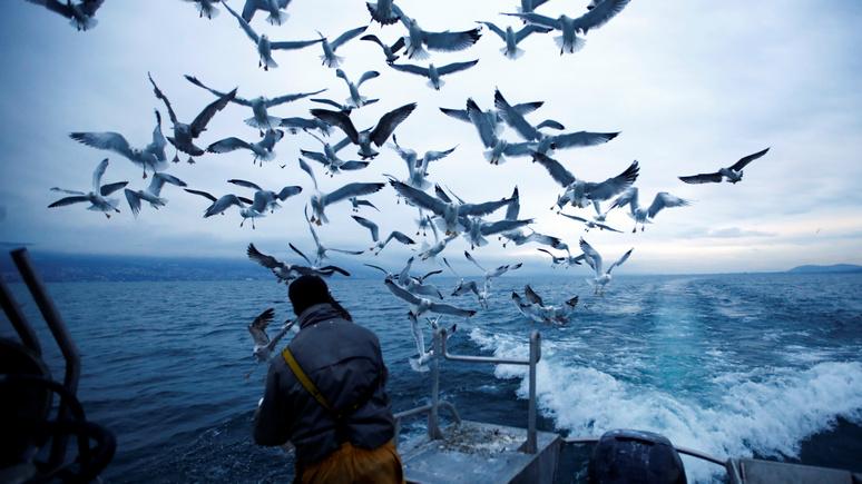 Sveriges Radio рассказало, как Фареры заложили «рыбную бомбу» под европейские санкции