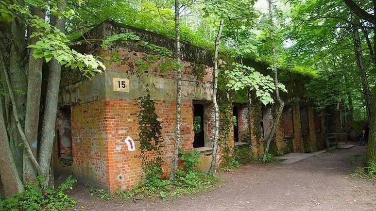 Из «Волчьего логова» Гитлера сделают мемориальный комплекс