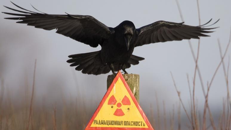Daily Mail: зима будет долгой и тёмной — эксперты предсказали 10 лет катаклизмов в случае ядерной войны между Россией и США